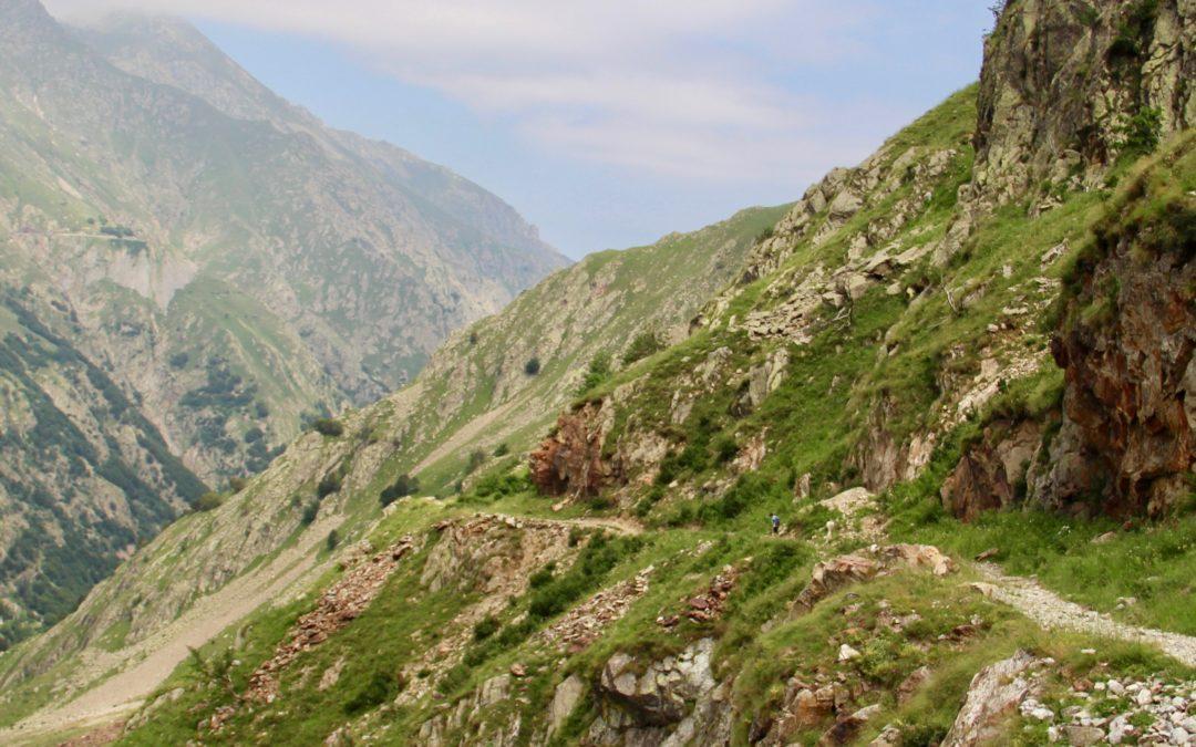 Geheim centraal pad tussen de natuur en onze gezondheid?